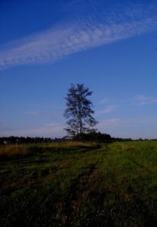 retreat walk 092